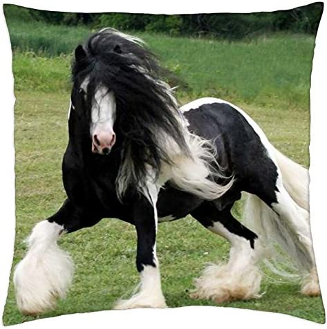 Amazon Com Sskbjtbdw Gypsy Vanner Horse Throw Pillow Cover Shell Decorative Cushion Cover Square 24 Inch Home Kitchen
