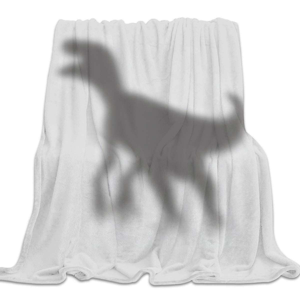 Shadow1yag7486 49x79inch=125x200cm YEHO Art Gallery 39x49 Inch Flannel Fleece Bed Blanket Soft Throw-Blankets for Girls Boys,Failure Blackboard Pattern Grey,Lightweight Warm Kids Blankets for Bedroom Living Room Sofa Couch Home Decor