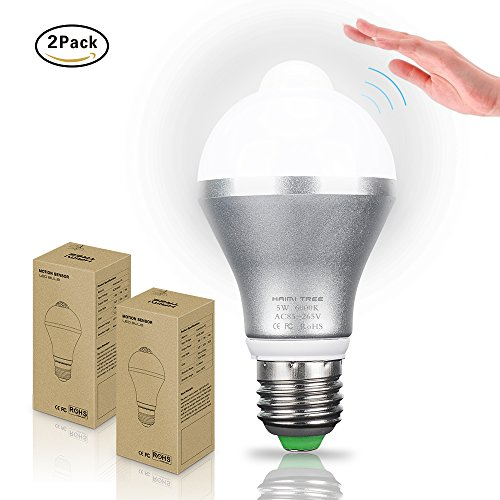 Motion Sensor Light Bulb,Hiwin 5W Cold White E26 Smart PIR