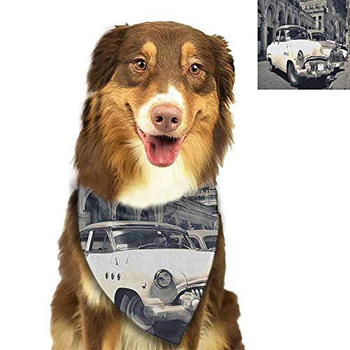 2019 Wholesale Vintage Car,Panoramic View of Shabby Old Havana Street with Vintage Classic American Cars, Grey Beige Scarf Bow ()