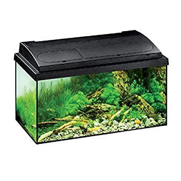 Eheim Acuario Aquastar, 54 L, Color Negro: Amazon.es: Productos para mascotas