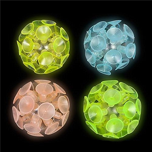 Glow in the Dark Suction Cup (Package of 12) Assorted Colors (Glow In The Dark Package compare prices)