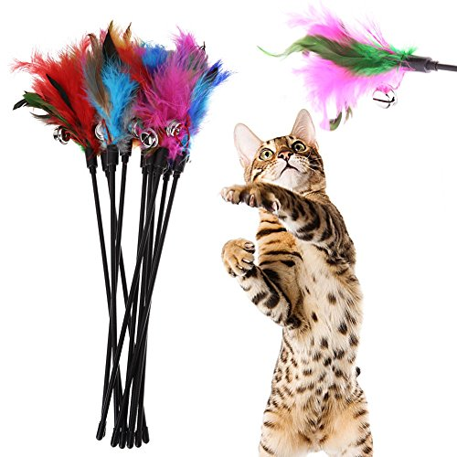 Iainstars Exerciser Interactive Cat Wand, Refills Feathers For Cat or Kitten 5pcs Cat Kitten Pet Toy Feather Short Rod Interactive Stick Bell Toy (Feathers Cat Toy Colors)