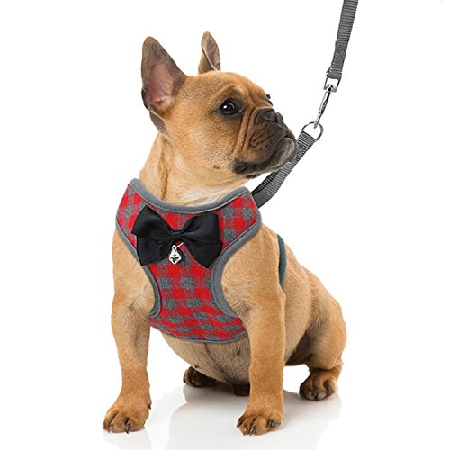 RYPET Small Dog Harness and Leash Set - No Pull Pet Harness with Soft Mesh Nylon Vest for Small Dogs and Cats Red S