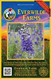Everwilde Farms - 100 Tall Larkspur Native Wildflower Seeds - Gold Vault Jumbo Seed Packet