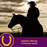 Horse Health Red Cell Iron-Rich Vitamin-Mineral