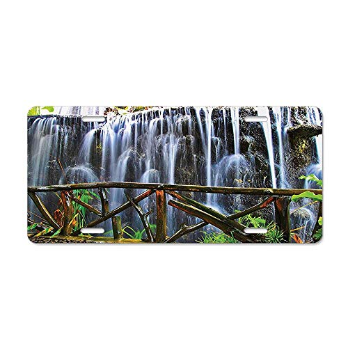 (GRAETfpeoglsd Tropical Park Falling Streams Plants Waterfall Scenery Customized License Plate Cover Aluminum Metal Car Licenses Plate Frame Holder for US Vehicles)