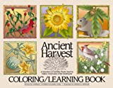 Ancient Harvest: A Selection of Favorite Plants Used by Native Americans of the Southwest