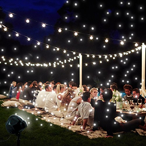 Snow Christmas Lights (EAMBRITE Multi LED Activated Party Lights With Remote and Base For Wedding Show Club Pub Multi Function Rotating Falling Snow Projector For Xmas Moving Points Landscape Lights For Home Yard Garden)