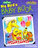Big Bird's Baby Book, Naomi Kleinberg and RH Disney Staff, 037580403X