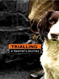 Trialling: A Spaniel's Journey