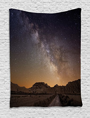 Ambesonne Night Tapestry, Milky Way over Desert of Bardenas Spain Ethereal View Hills Arid Country, Wall Hanging for Bedroom Living Room Dorm, 40 W X 60 L Inches, Plum Apricot Chocolate by Ambesonne