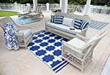 Eco Chic Outdoor Rug, Recycled, Easy Clean, Reversible, UV resistant, Mildew Resistant, 5x8 Zagora Blue & White, Great for Patio, Picnic or RV Camping Mat