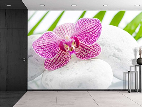 Pink Orchid Over Rocks with Palm Leaves on the Background Wall Mural