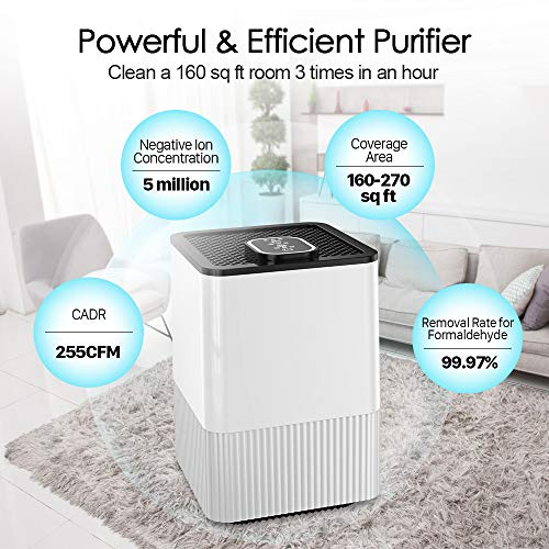 4 In 1 Air Purifier With Real Hepa Filter Amp Ionizer Home