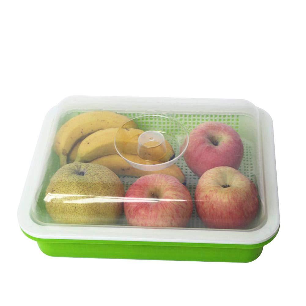 Urben Life Kit de germinació n, Caja de Semillas, espesador de siembra, Kit de germinació n de Semillas Verdes, Gran Capacidad con Tapa, pequeñ o Invernadero Reutilizable para el hogar, jardí n, Granja jardín
