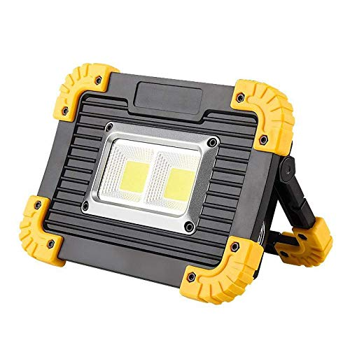 Radjawali Portable 20W COB LED Work Light, Outdoor Lantern Lamp, Flood Lights Flashlight with 18650 Rechargeable Battery, Power Bank(USB Output to Charge Mobile Devices), Emergency Light (LL812)