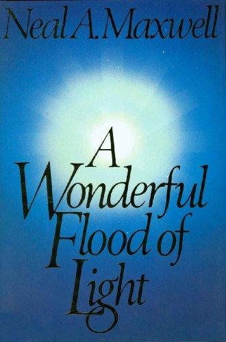 Wonderful Flood Of Light in US - 5