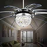 Tipton Light Silver Take-off Ceiling Fan Light 42 Inch Ceiling Fans 8 Retractable Acrylic Blades Remote Control Simple Style for Dining Room,Bedroom,Living Room,Study