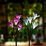 Eternity Led Glow Solar garden lights - LED Light up garden Lily flowers – Solar Powered garden flower Lights (set of 2)