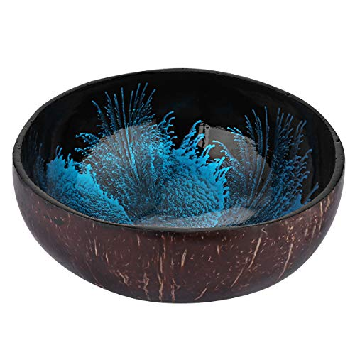 BESTONZON Coconut Bowls Natural Coconut Shell Storage Bowl Coconut Serving Bowls Candy Container Nuts Holder