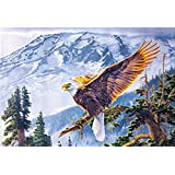 AMERICAN EAGLE UNFRAMED Holographic Wall Art-POSTERS That FLIP and CHANGE images-Lenticular Technology Artwork...
