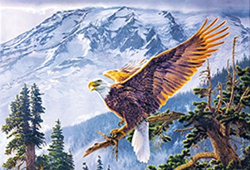 AMERICAN EAGLE UNFRAMED Holographic Wall Art-POSTERS That FLIP and CHANGE images-Lenticular Technology Artwork--MULTIPLE PICTURES IN ONE--HOLOGRAM Images Change--Technology by THOSE FLIPPING PICTURES
