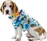 Hawaiian Dog Pet Costume Size Medium