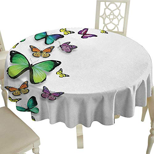 Curioly Butterfly Printed Tablecloth Different Size Butterflies on Plain Background Wild Nature Graphic Bohemian Decor Desktop Protection pad D59.05 Inch Multicolor