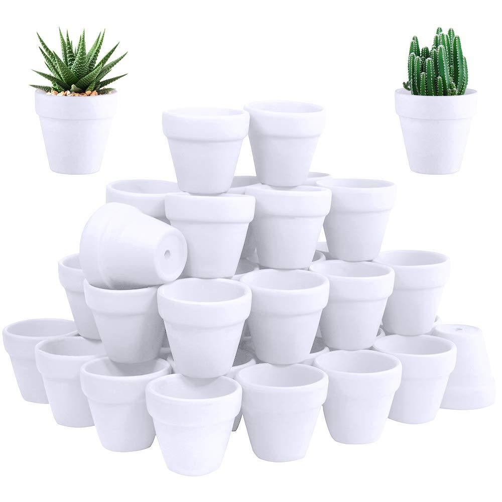 60 Pcs White Terra Cotta Pot – 2.5 Inch Tiny Mini Clay Pots with Drainage Holes Flower Nursery Terra Cotta Pots for Succulent Plants, Crafts, Wedding Baby Shower Favor
