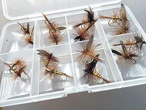 Pack de 16 moscas secas Wickmans fancy para pesca de trucha, incluye caja con cierre de clip: Amazon.es: Deportes y aire libre