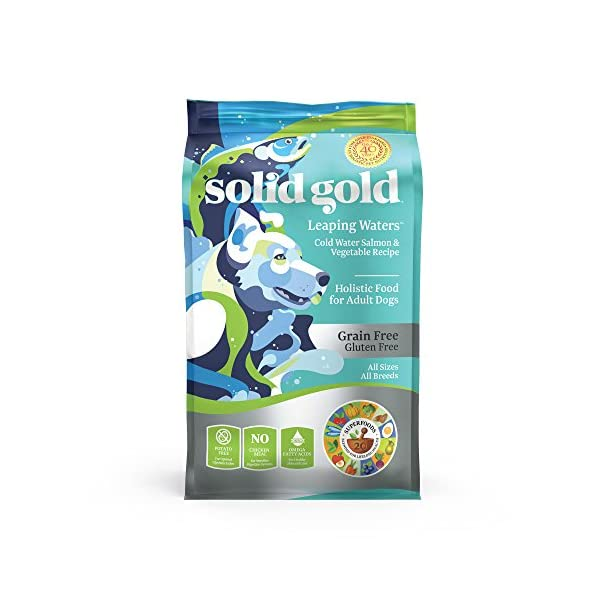 Solid Gold – Leaping Waters with Cold Water Salmon & Vegetable Recipe – Grain Free & Gluten Free for Sensitive Stomachs – Holistic Adult Dry Dog Food – 22lb Bag