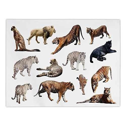 (Polyester Rectangular Tablecloth,Safari Decor,Collection of Tigersand other Big Wild Cats Predatory Feline Zoo Lying Standing Background,Dining Room Kitchen Picnic Table Cloth Cover,for Outdoor Indoo)