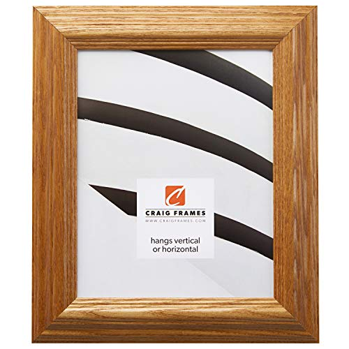 Cheap Craig Frames 78673001 20 by 26-Inch Picture Frame, Solid Wood, 1.8-Inches Wide, Honey Brown