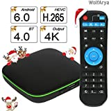 Android TV Box : Quad-Core Support VP9 HEVC Decoding 4K Full HD Output / HDMI2.0 / 3D / H.265 / Ethernet / 2.4GHz WIFI / Bluetooth Smart TV Box by WolfArya