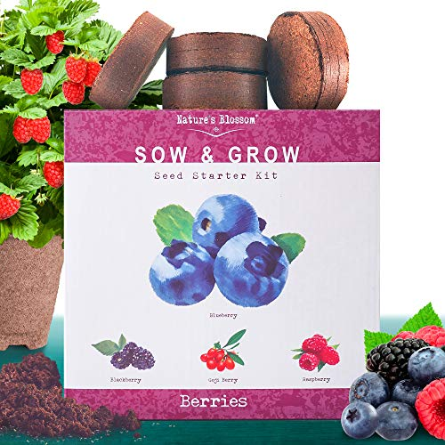 Nature's Blossom Fruit Growing Kit. Grow 4 Types of Berries from Seed: Raspberries, Blueberries, Goji Berry, Blackberries Organic Seeds, Pots, Seed Starting Soil, Markers, Gardening Guide (Grow A Peach Tree From The Seed)