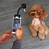 Yeefant Portable Pet Selfie Stick Phone Attachment Dog Cat Take Photos Training Toy,Convert Any Surface Into An Instant Pet Photo Booth