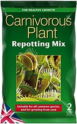 Mezcla de trasplante para plantas carnívoras de 2 litros: Amazon ...