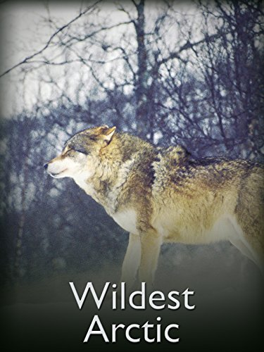 Wildest Arctic on Amazon Prime Video UK