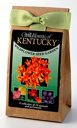 Kentucky Wildflowers - Seed Mix - a Beautiful Collection of Twelve annuals & perennials - Enjoy The Natural Beauty of Kentucky Flowers in Your own Home Garden