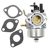Carbhub Carburetor for Briggs & Stratton 801396 801233 801255 Snow Blower Carb
