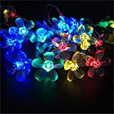 BGFHDSD New Multi 2M 20 LED Battery Operated Sakura Garland Cherry Blossoms Peach Flower String Fairy Christmas Light Cereza Luz RGB