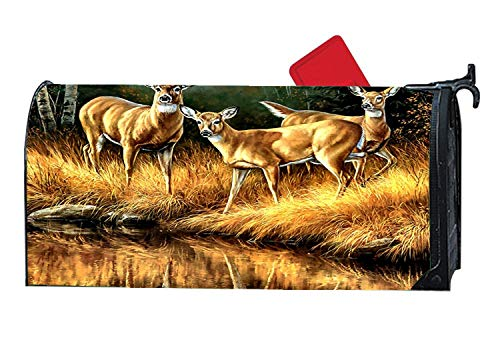 Whitetail Reflections - Deer Magnetic Mailbox Cover, Mailbox Wrap Home Decorative for Standard Size -