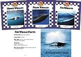 Whales Set 2