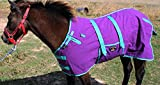 CHALLENGER 44'' Canvas Duck Turnout Water Resistant Foal Winter Blanket 51702
