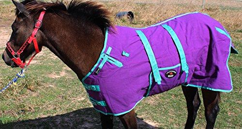s Duck Turnout Water Resistant Foal Winter Blanket 51702 ()