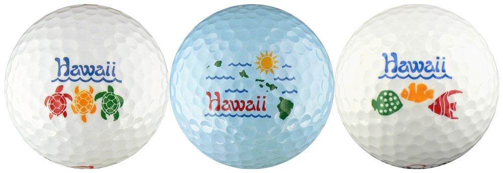 EnjoyLife Inc Hawaii w Turtles, Island Map Fish Golf Ball Gift Set