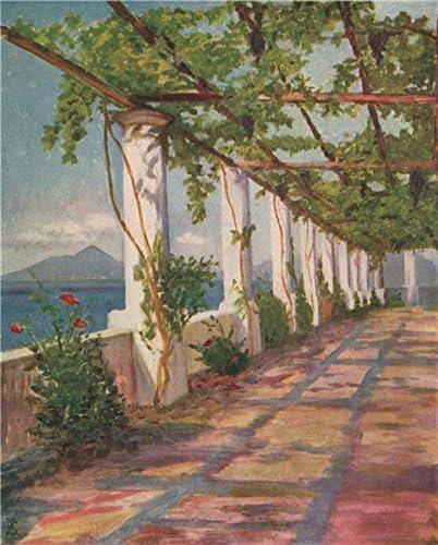 Napoli. pérgola por David Fitzgerald. Nápoles, antiguo de ...