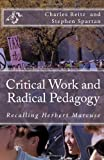 Critical Work and Radical Pedagogy, Charles Reitz, 146366673X