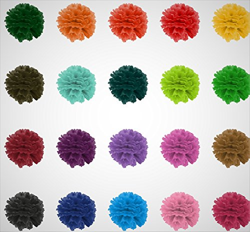 Paper Ball (Tissue Pom Poms - Paper Flowers balls - Set of 20 Colorful & Big Decoration- 20 cm Long for a Great Party, Birthday & Wedding Crafts + Great Ideas for)
